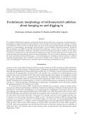 Origin and Phylogenetic Interrelationships of Teleosts - Vertebrate ... - Page 3