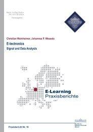 Praxisbericht 16 - ERCIS