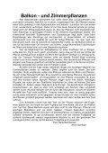 Canna vortreiben: 9/04 S 21 - Magix - Seite 5