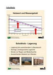 Scheitholz - Lagerung