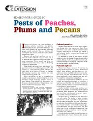 Home Fruit and Nut Spray Guide - Texas AgriLife Extension Service