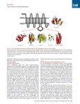 Fusion Partner Toolchest for the Stabilization and Crystallization of ... - Page 3