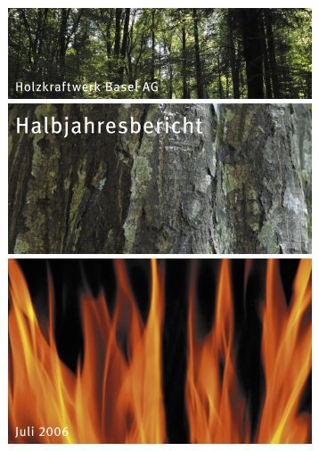 Holzkraftwerk Basel AG - IWB Industrielle Werke Basel
