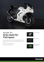Ninja 250R - Kawasaki,Motorräder,Service