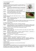 PAZIENTI RICCI NELLO STUDIO VETERINARIO - Page 6