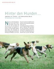 Geschichte der Niedersachsenmeute, Heritage 2005 (PDF)