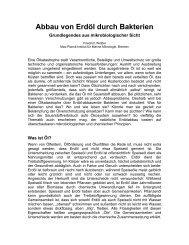 Abbau von Erdöl  durch Bakterien - Max-Planck-Institut für Marine ...