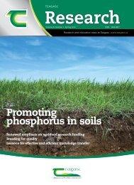 Promoting phosphorus in soils