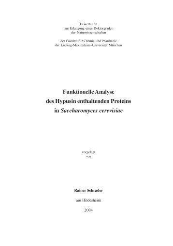 Funktionelle Analyse des Hypusin enthaltenden Proteins in ...