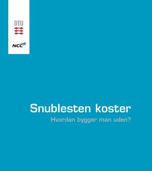 Snublesten koster - DTU Byg - Danmarks Tekniske Universitet