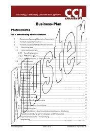 Businessplan, Muster
