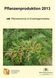 Pflanzenschutz im Erwerbsgemüsebau - Baden-Württemberg