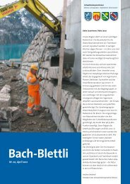 Nr. 20, April 2012 - Schwellenkorporationen Brienz - Brienzwiler ...