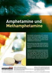 Amphetamine und Methamphetamine - Institut Suchtprävention