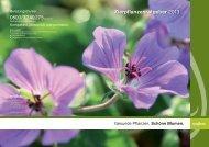 Zierpflanzenratgeber 2013 - Syngenta