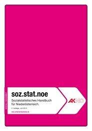 Sozialstatistisches Handbuch NÖ 2012 (pdf 2,3 mb - AK ...