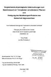 Vergleichende physiologische Untersuchungen zum Malattransport ...
