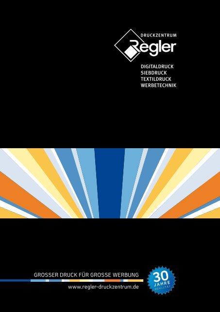 FLEX Klett Polier Schleifteller 115mm M14 208.817 208817 Polierteller