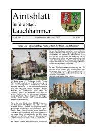Amtsblatt 01/2005 - Stadt Lauchhammer