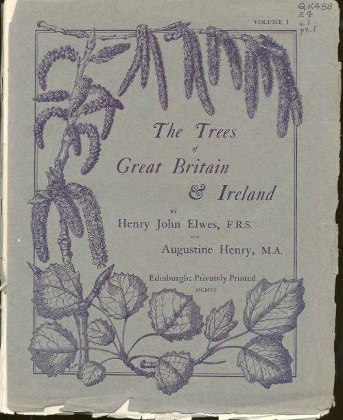 Irish Ornament With Grey Cotton Designed Sheep on Stick Legs