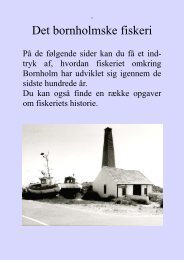 Det bornholmske fiskeri - Bornholms Museum