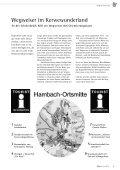 Mit diesem Team - Hambacher Brennesselkerwe - Seite 6