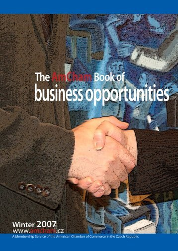 Business Opportunities Book 2007 - Ministry of Foreign Affairs of the ...