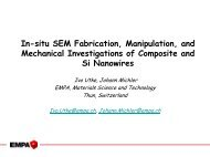 In-situ SEM Fabrication, Manipulation, and Mechanical - Kleindiek ...