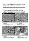Elektronenmikroskopische Untersuchungen an Lackschichten der ... - Seite 6
