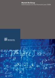 Information on the financial year 2008 (PDF, 317 - Munich Re