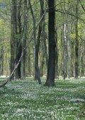 Naturparke in Deutschland - Aufgaben und Ziele - VDN - Seite 6
