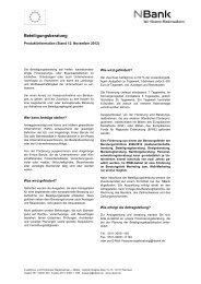 Produktinformation_Beteiligung-Beratungsfoerderung - bei der NBank