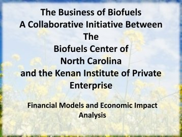 The Business of Biofuels A Collaborative Initiative Between The ...