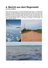 4. Bericht aus dem Regenwald