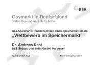 Wettbewerb im Speichermarkt - Bundesverband Neuer ...
