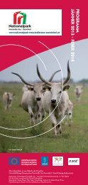 Download Visitor Programme 2013 as PDF - Nationalpark ...