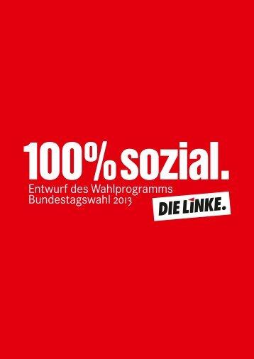 Wahlprogrammentwurf von DIE LINKE Bundestagswahl 2013