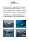 PDF 3,8 MB -  PROGRESS Film-Verleih - Seite 4