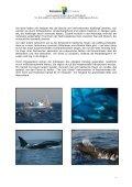 Presseheft als PDF - PROGRESS Film-Verleih - Seite 4
