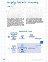 RNA Guide: Analyzing RNA with Microarrays - Promega