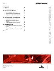 Protein Expression Protocols and Applications Guide - Promega