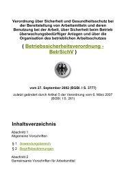 ( Betriebssicherheitsverordnung - BetrSichV ... - Pvting.de