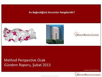 Method Perspective Ocak Gündem Raporu, Şubat 2013