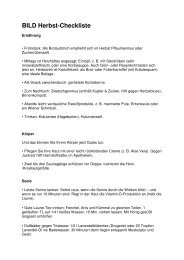 BILD Herbst-Checkliste