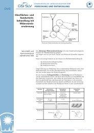 Oberflächen- und Randschicht- behandlung mit ... - SLV Halle