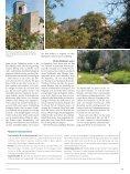 Durch den Hügelzug der Zedern im VCS-Magazin - Seite 3