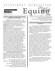 Veterinary Newsletter - Equine - VET-MAGAZIN.com