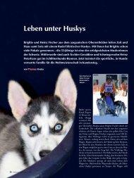 Leben unter Huskys - AUFRAD.CH Home
