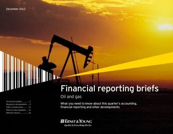 Financial reporting briefs