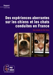 sur les chiens et les chats conduites en France